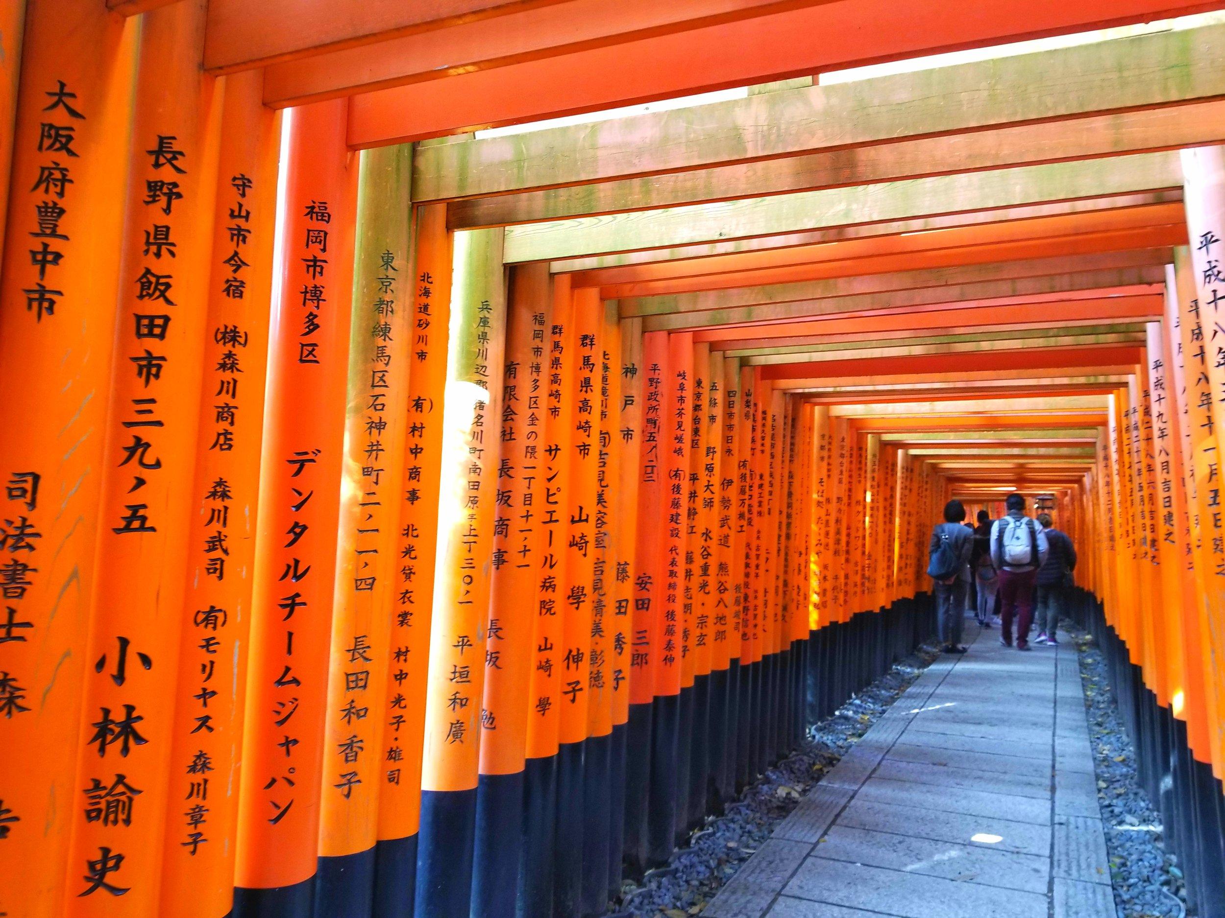 uprooted-traveler-fushimi-inari-vegan-guide-kyoto.jpg