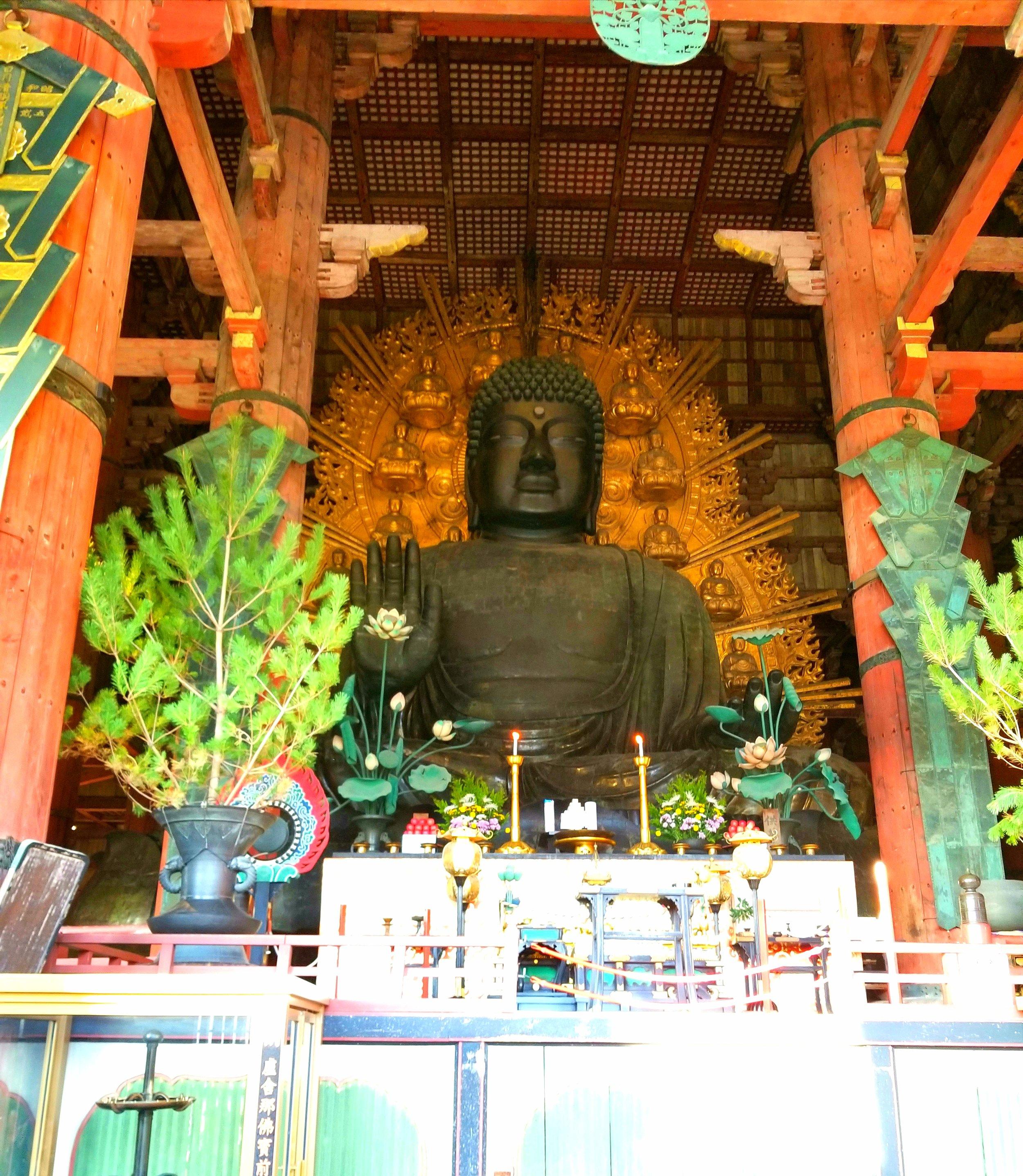 uprooted-traveler-buddha-nara-todai-ji-vegan-guide-kyoto-nara