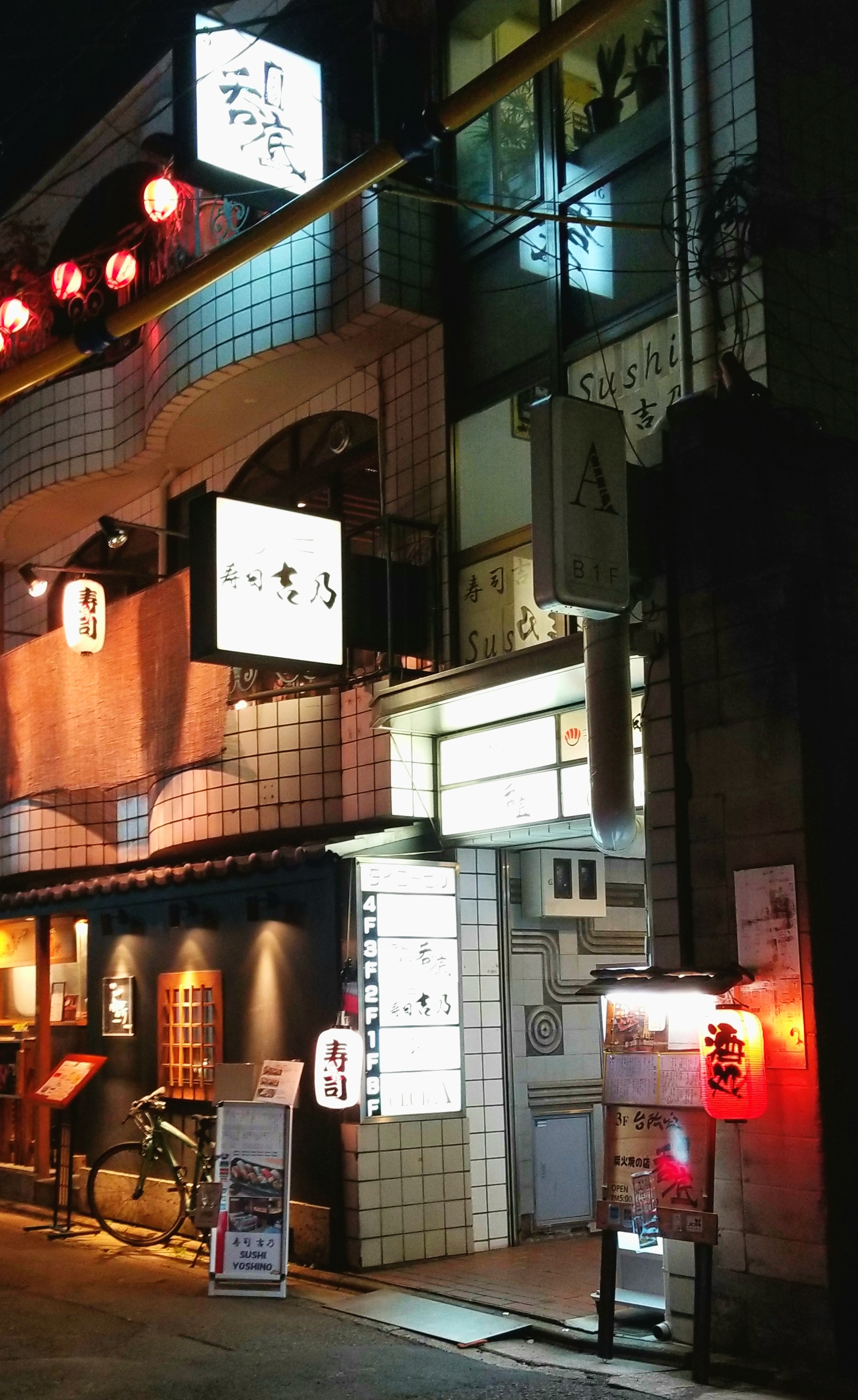 uprooted-traveler-vegan-guide-kyoto-pontocha-alley