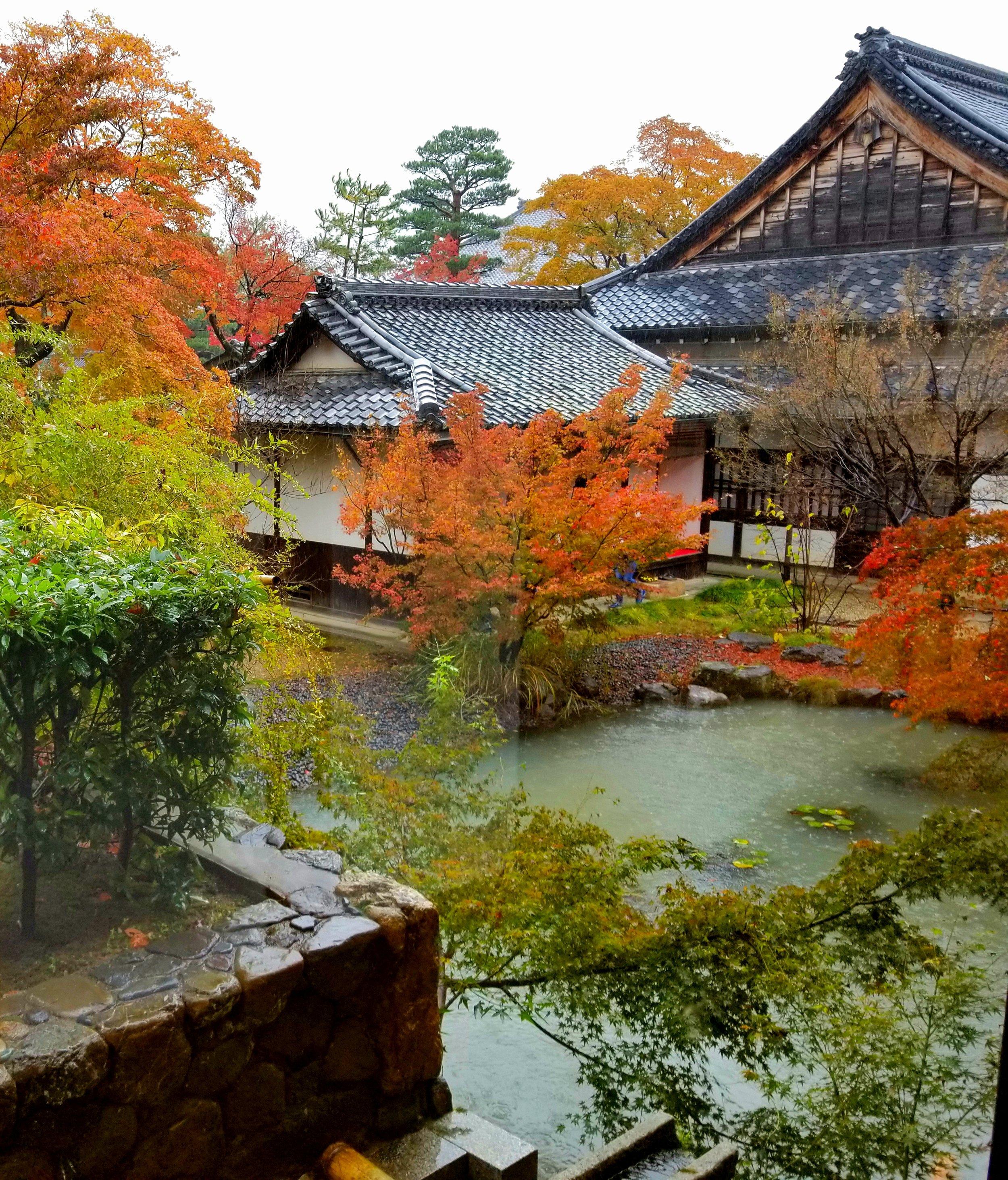 uprooted-traveler-kyoto-guide-shigetsu-vegan-tenryu-ji-temple