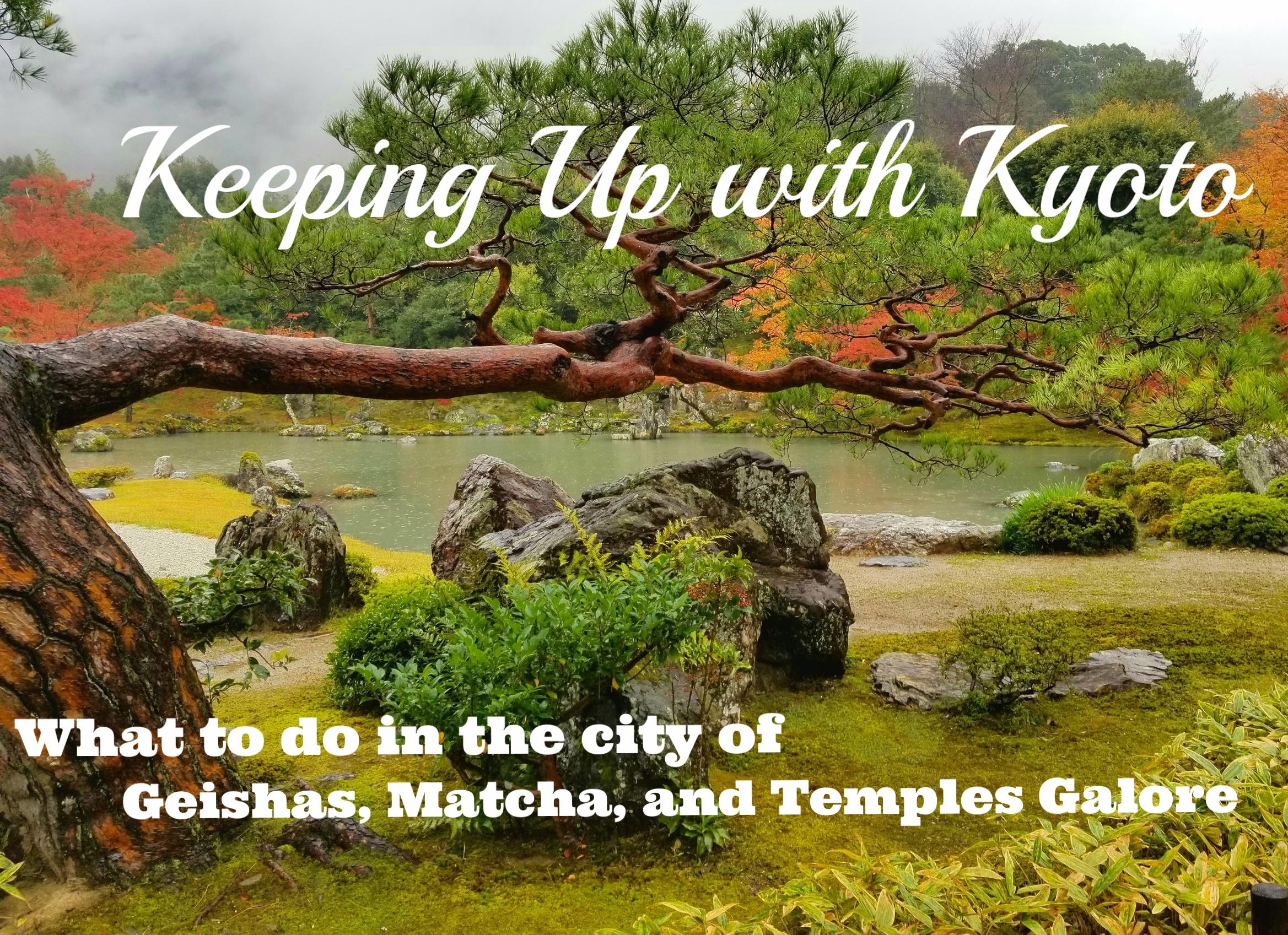 uprooted-traveler-Tenryu-ji-Temple-1.jpg
