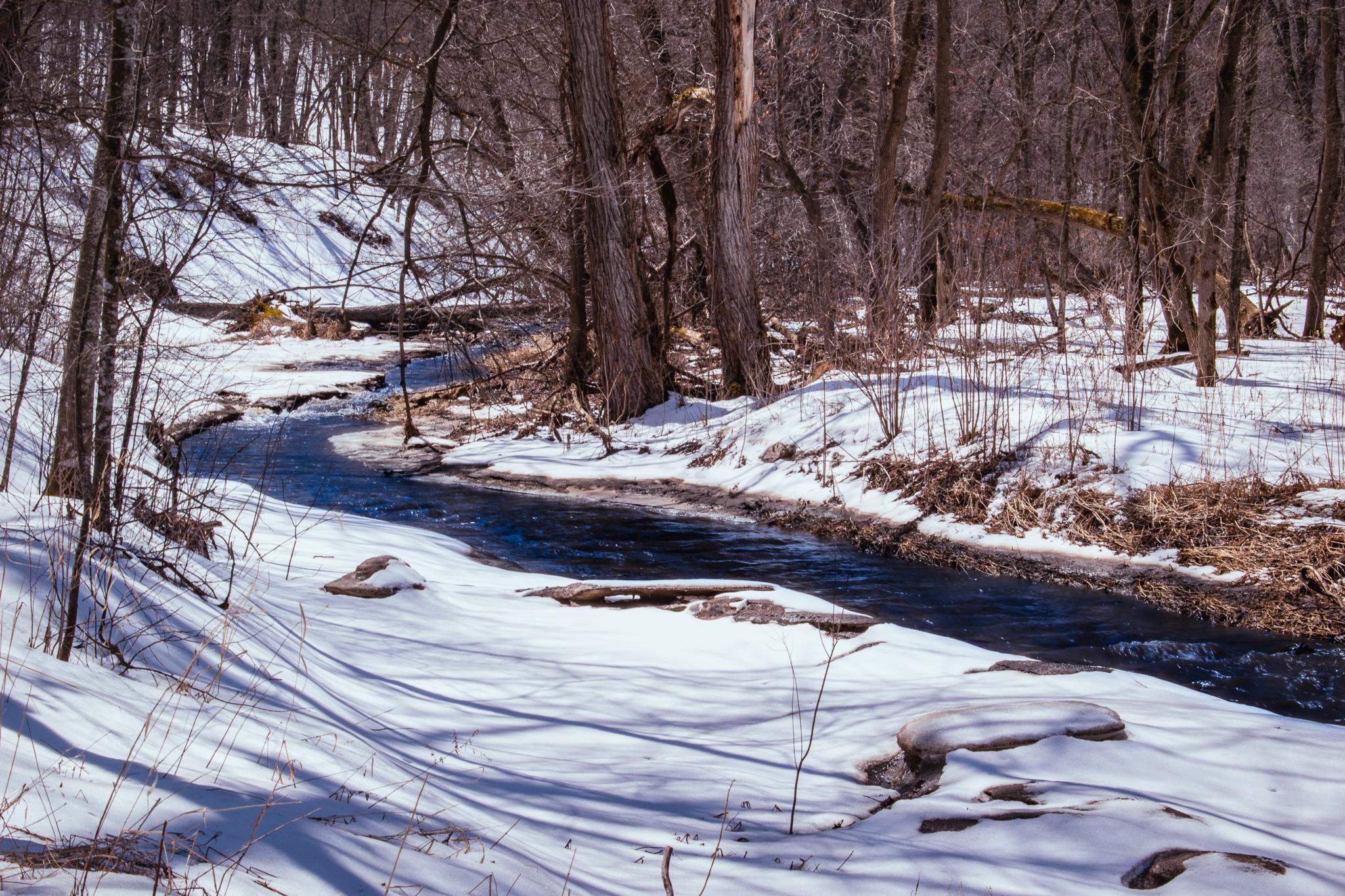 uprooted-traveler-nerstrand-big-woods-state-park-prarie-creek-minneapolis.jpg