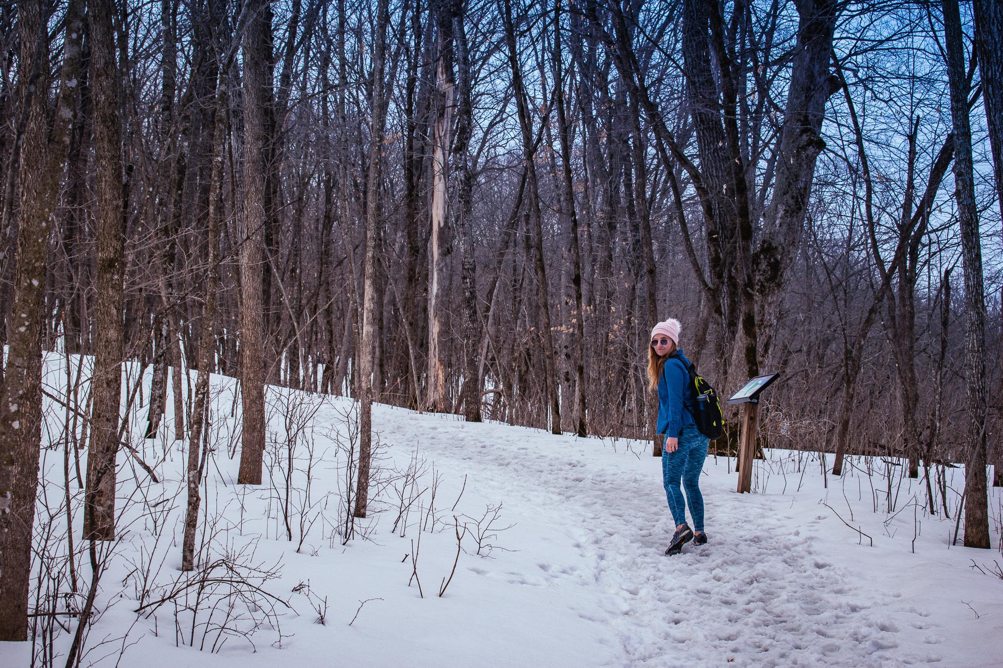 uprooted-traveler-nerstrand-big-woods-state-park-hiking-minneapolis-st-paul-2.jpg
