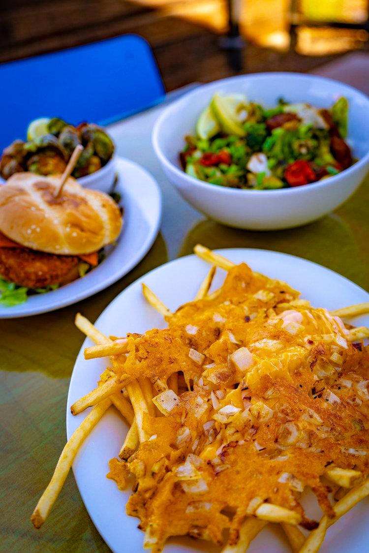 uprooted-traveler-arizona-animal-style-fries-vegan-green-new-american-restaurant-phoenix-vegan.jpg