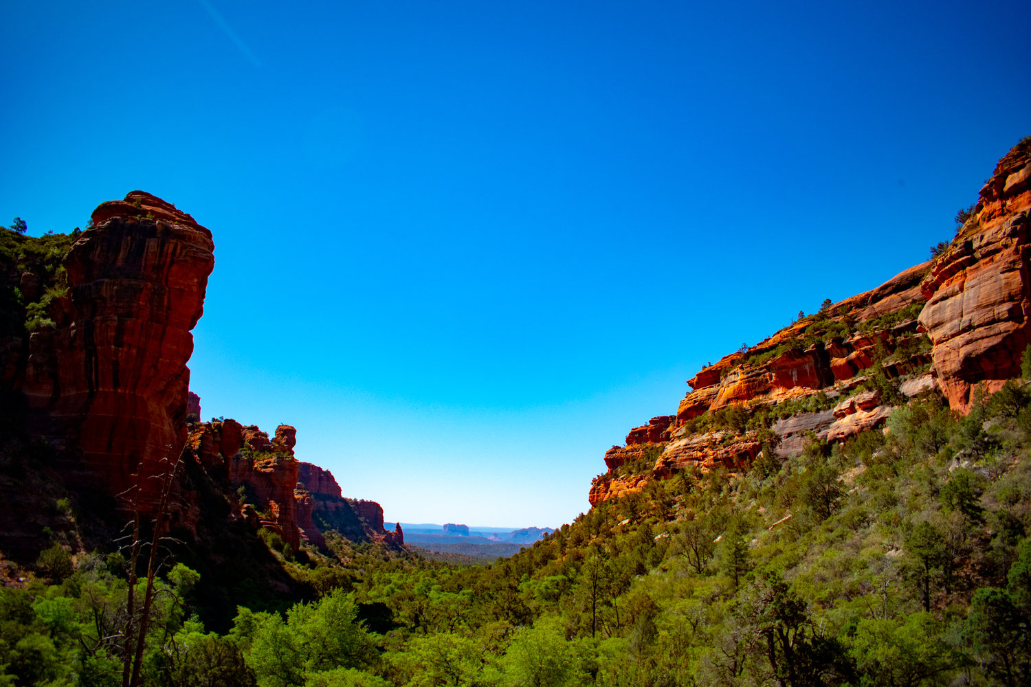 uprooted-traveler-sedona-arizona-hiking-fay-canyon-vegan-road-trip.jpg