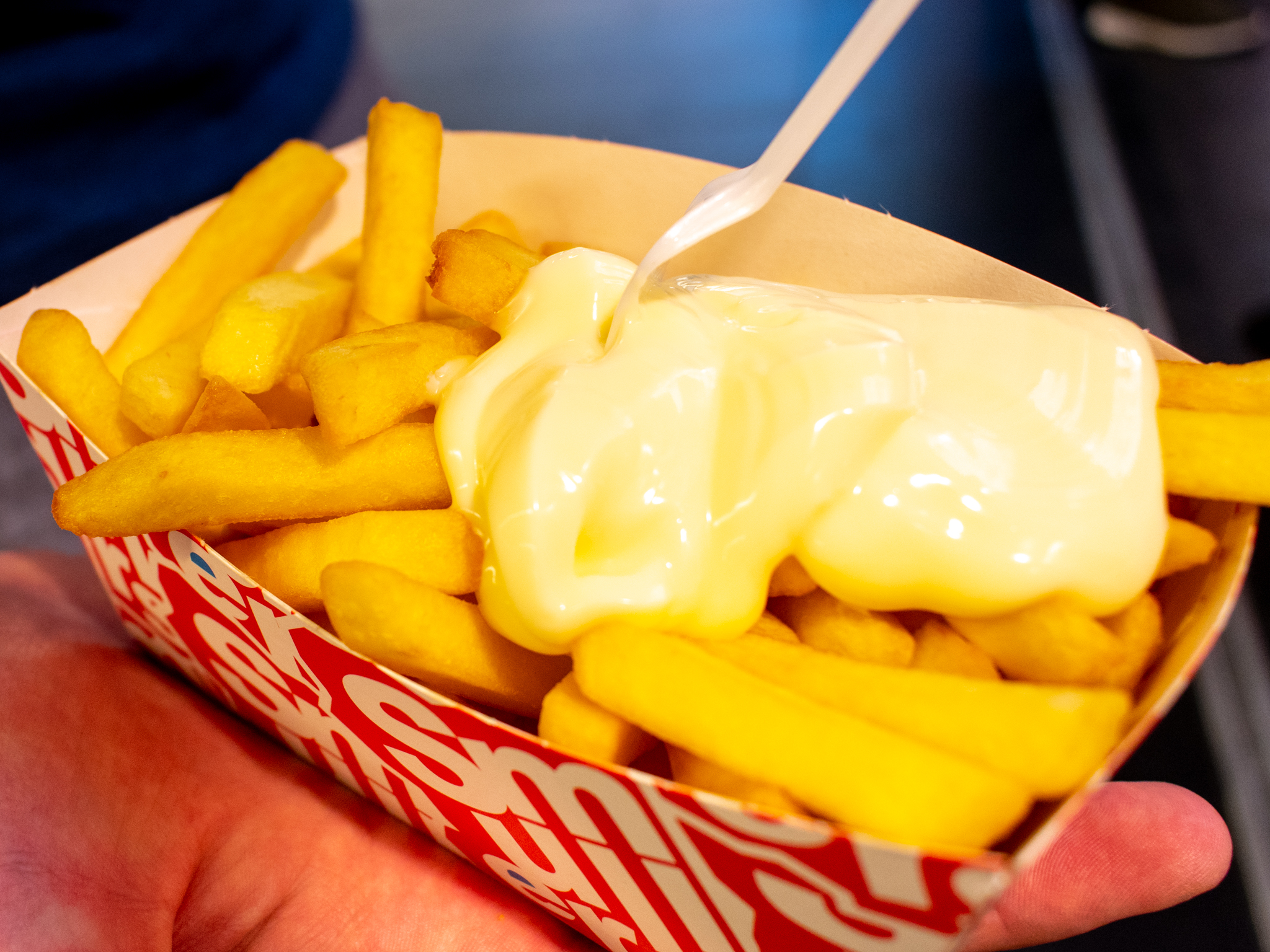 uprooted-traveler-vegan-guide-mayo-fries-amsterdam-smullers-plant-based
