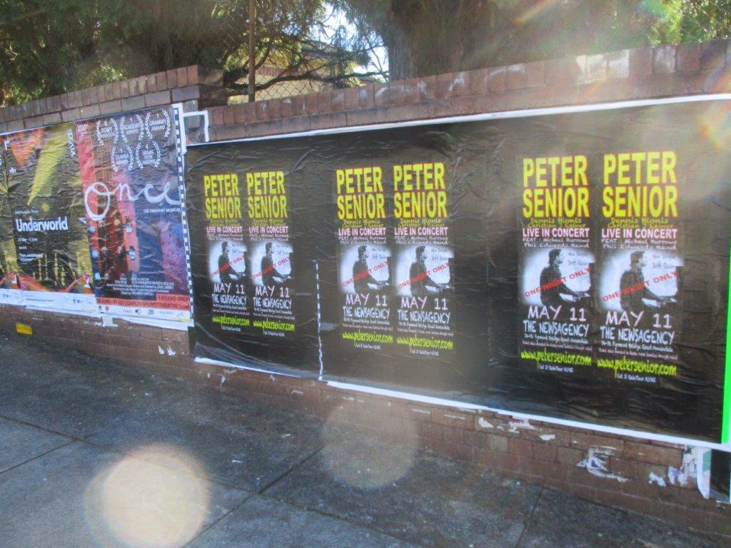Peter Senior (1).jpg
