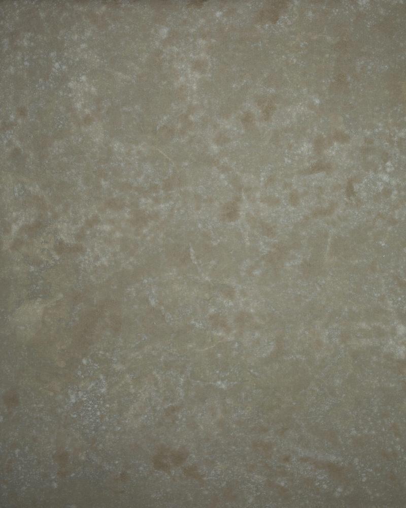 Parker Backdrops-061718-PB029.jpg