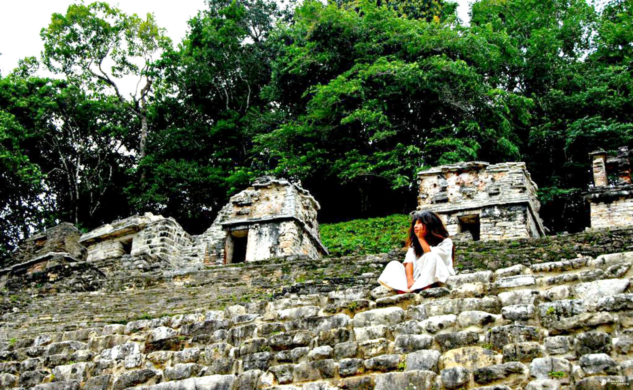 DTour-conoce-Selva-Lacandona-un-paraíso-natural-de-México_-LA-FUENTE-QUERÉTARO-7.jpg