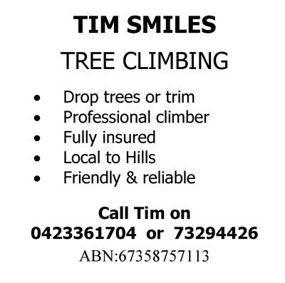 Tim-Smiles-Tree-Climbing-6x6.jpg