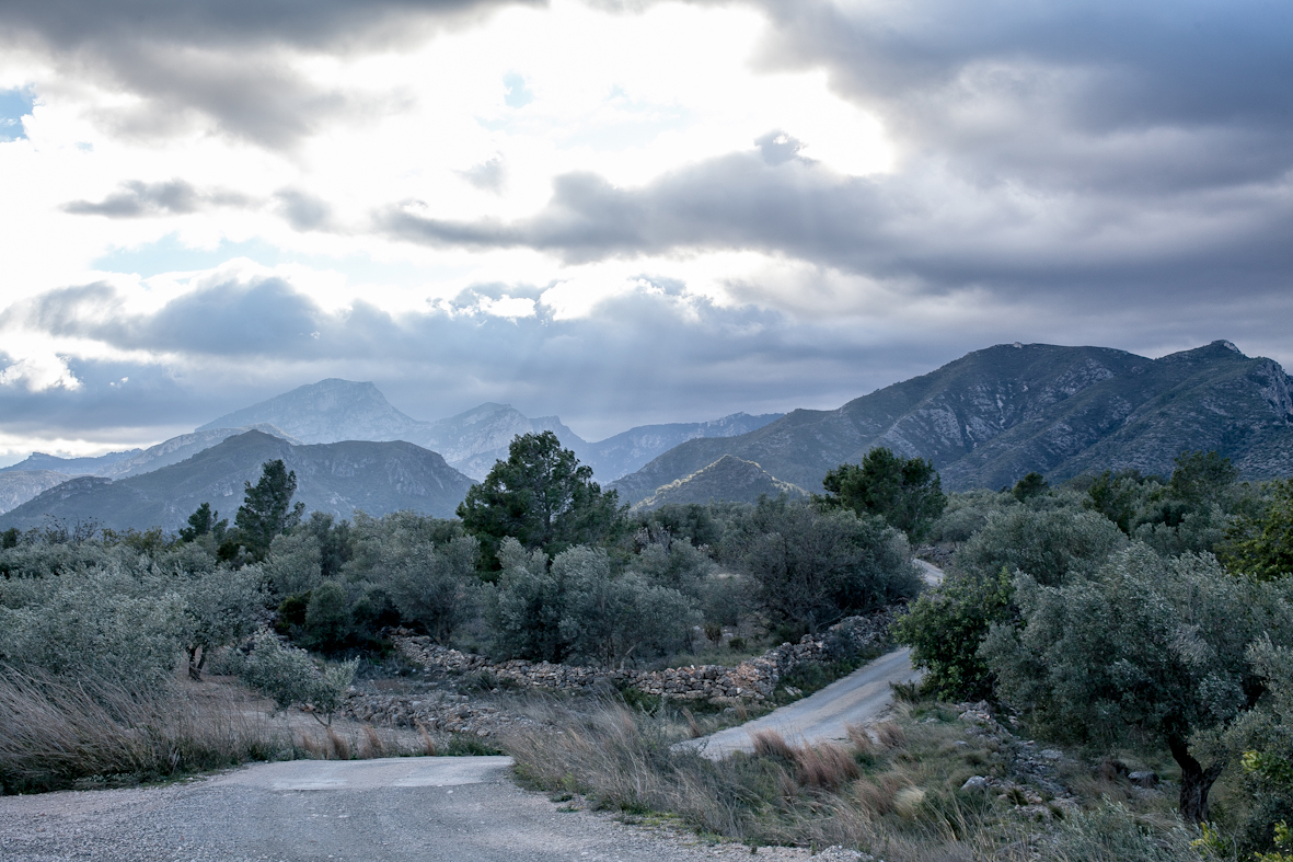 IN THE MOUNTAINS OF SPAIN