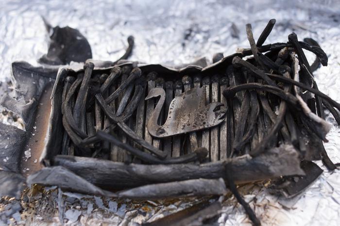 Black Swan  Silver, Swan Vestas; 2009