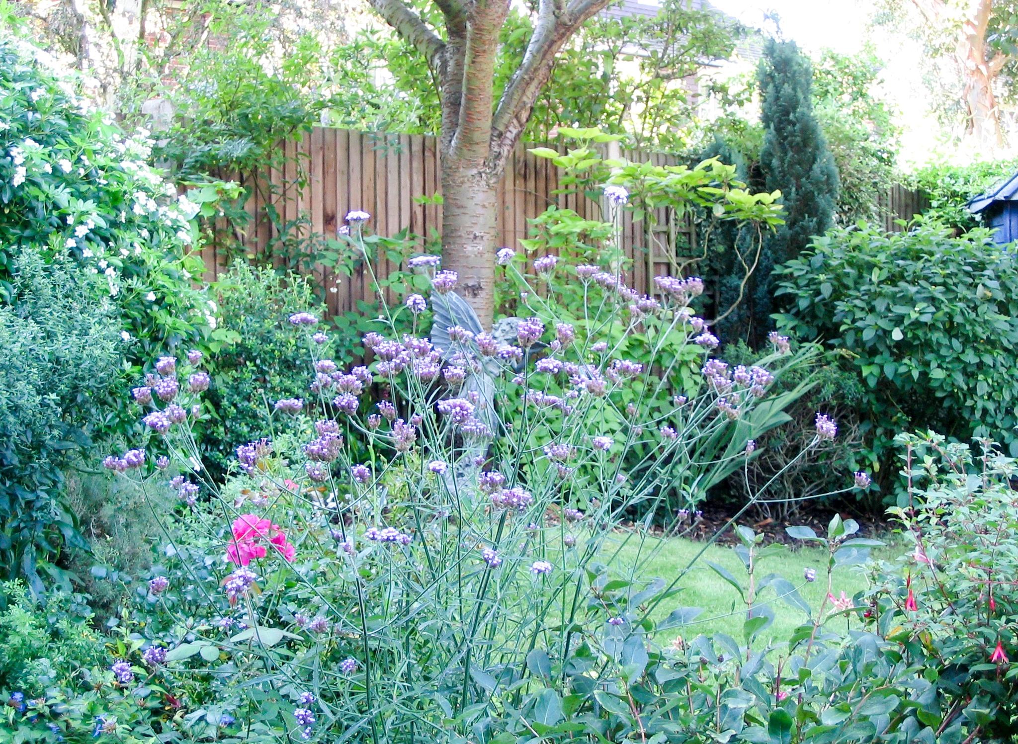 walled garden 5.jpg