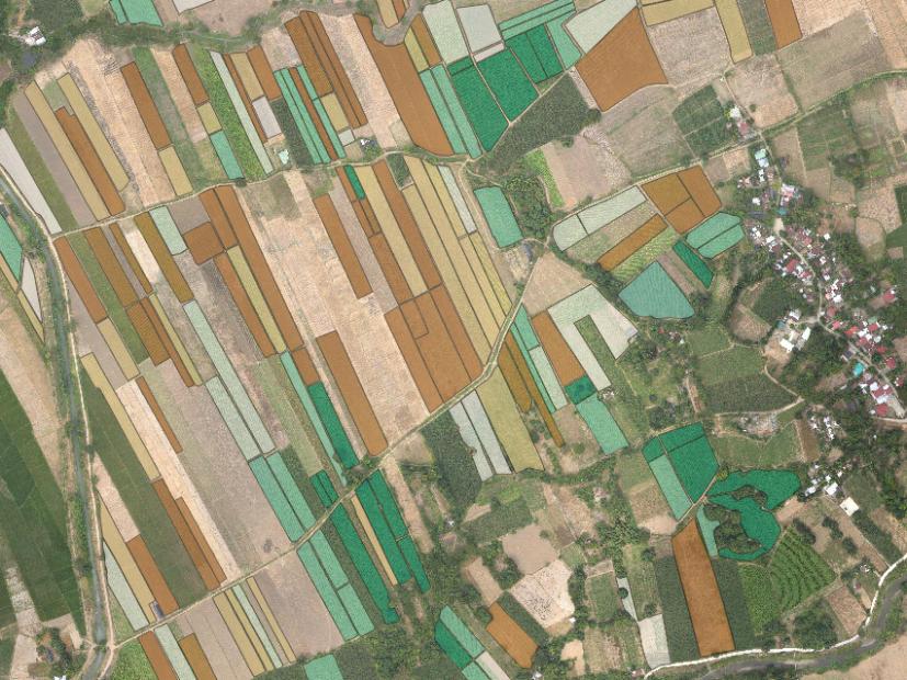 AVERAGE AVERAGE PLANT HEIGHT PER FARM BLOCK