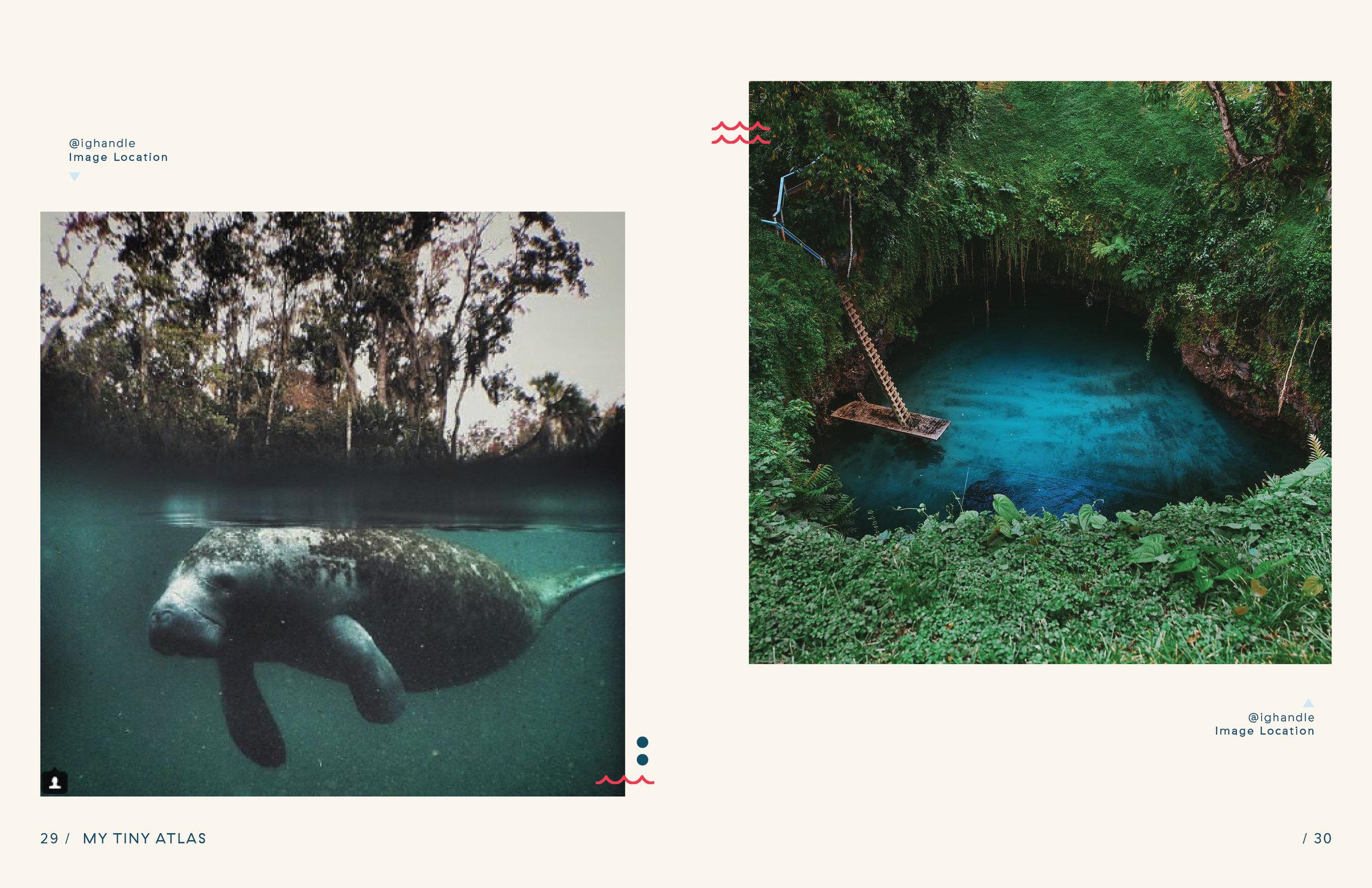 portfolio tiny atlas water book proposal17.jpg