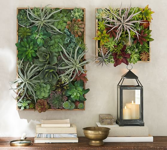 Succulent Greenwall from Pottery Barn