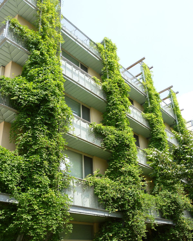 Vertical Green from Greenscreen
