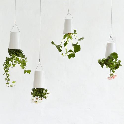 Sky Planter from Boskke