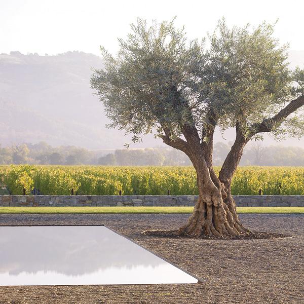 Landscape Design by Andrea Cochran