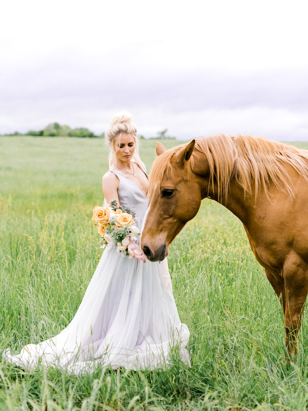 Bridal Portrait With Horse and Blue Dress