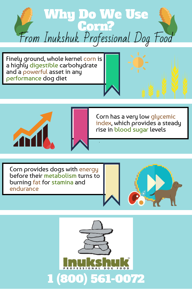 The benefits of corn and why we use it.