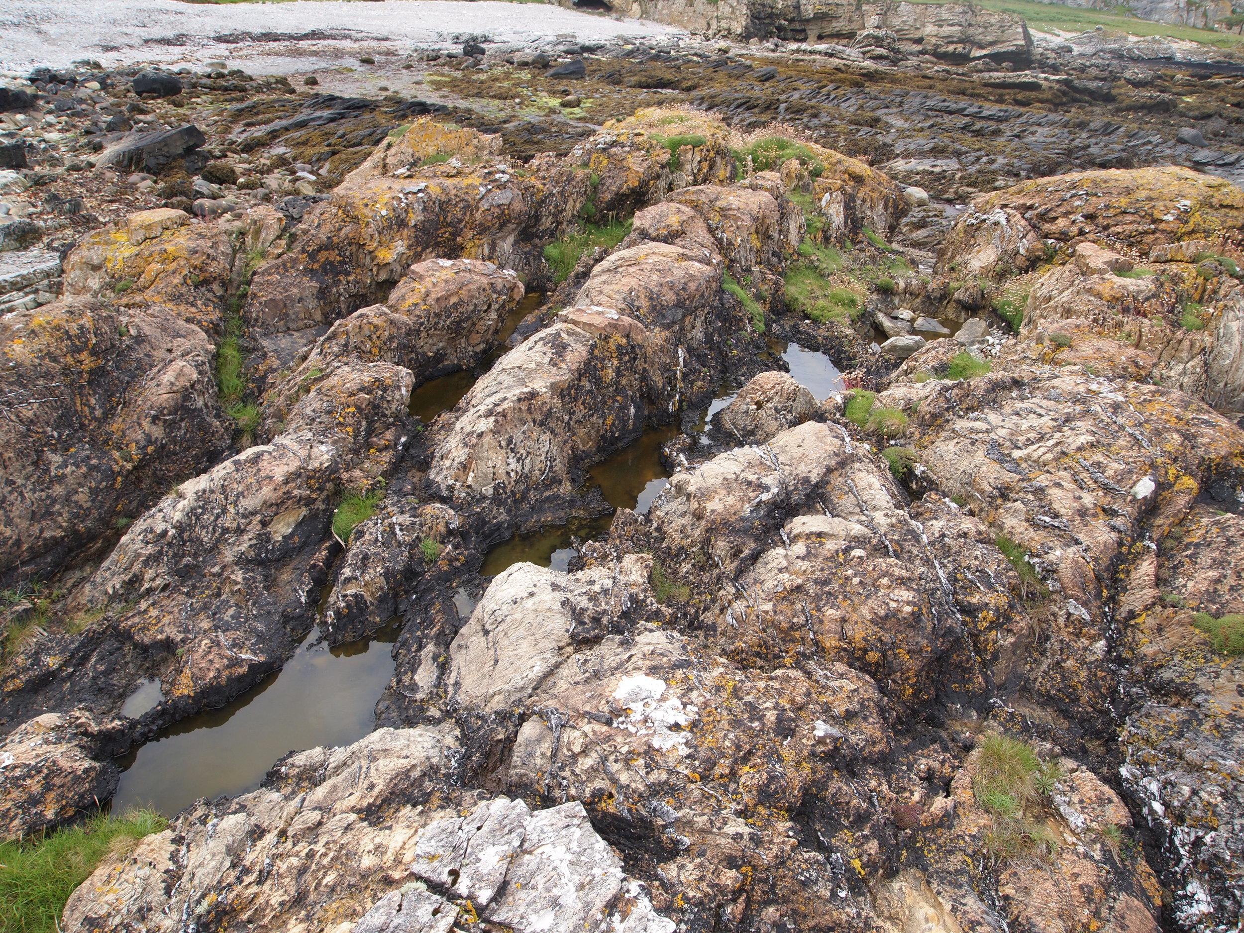 Stromatolites in the Bonahaven Dolomite near Bolsa