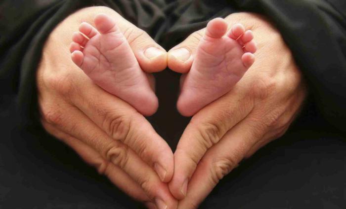 Protect All Life -