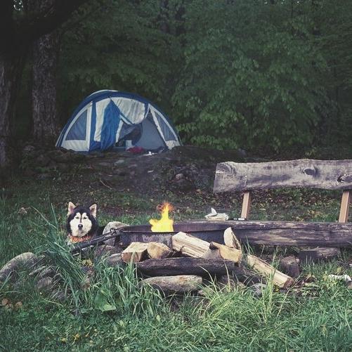 Camping au Diable vert -