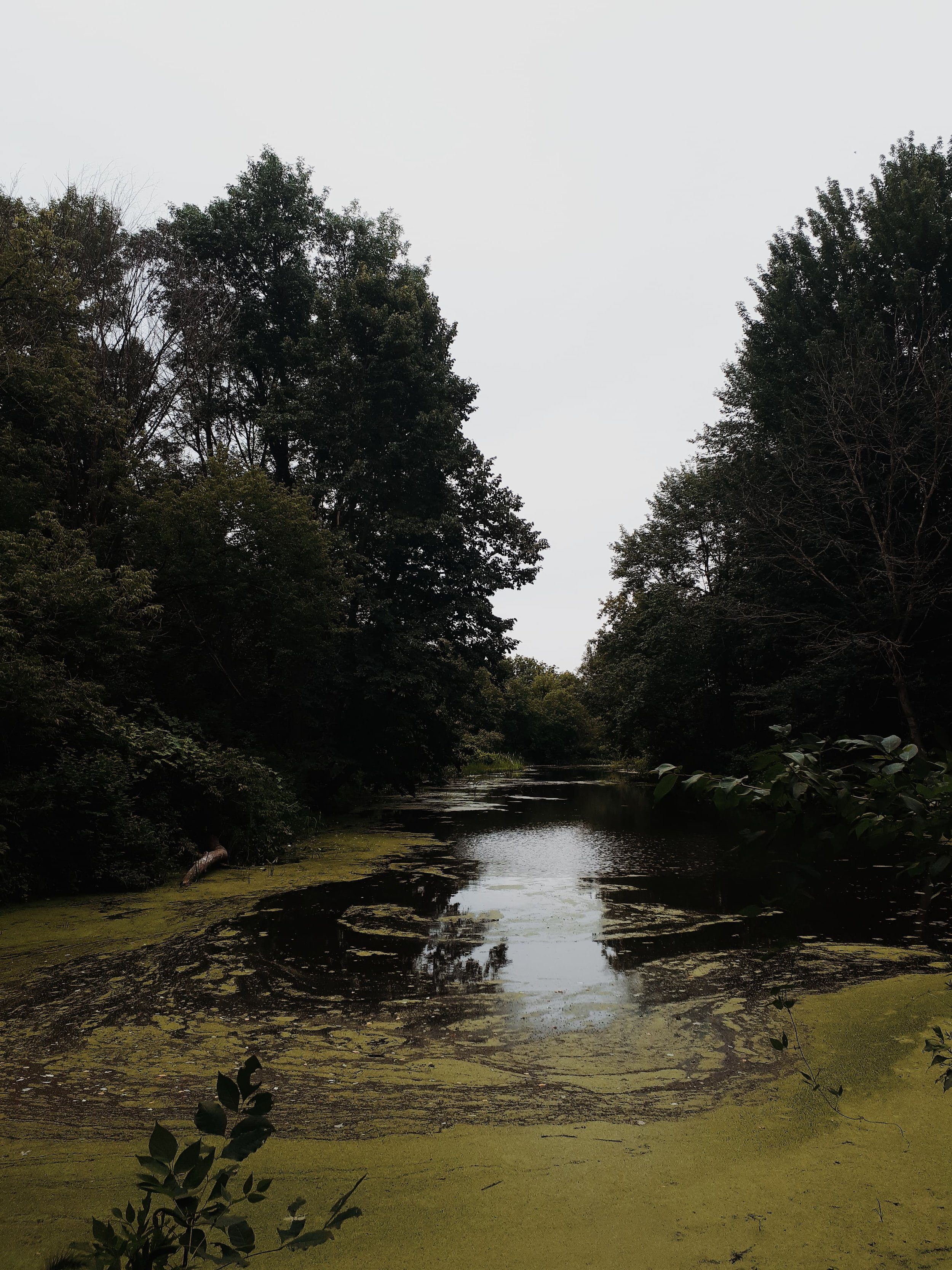 centre de la nature farhnam.jpg