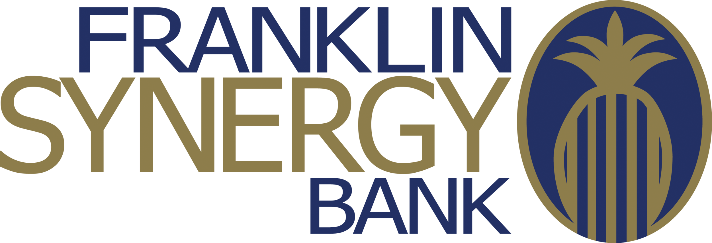 Franklin Synergy Bank ($1,000 – Water Station).png