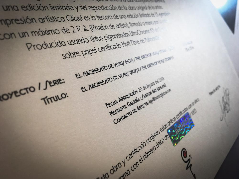 certificadoyholograma2_1000x750x.jpg