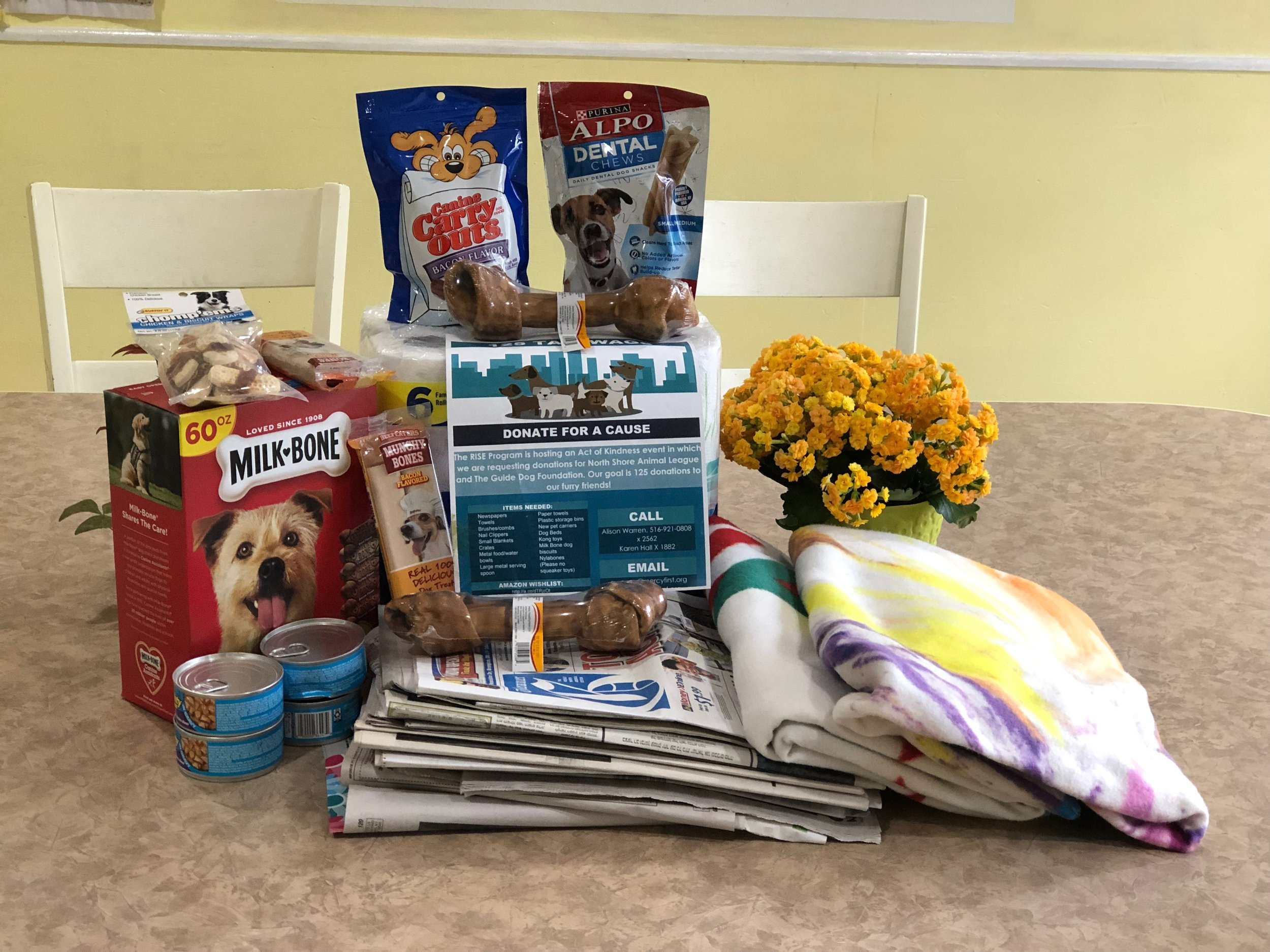 Merrick Group Home Staff   Help the RISE Program in their efforts to support the North Shore Animal league and the Guide Dog Foundation with donations.