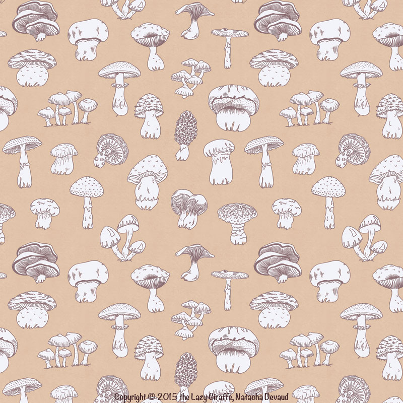 mushroomCombo.sample.web.1.jpg