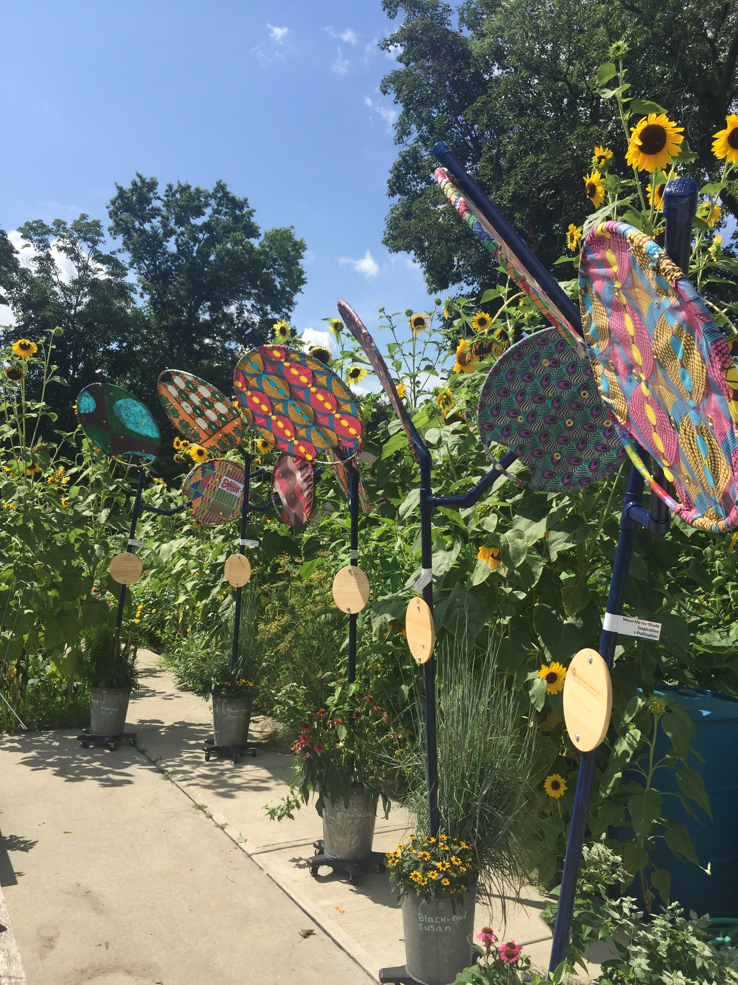 Shade-Flowers and Sunflowers in bloom at Nightingale Community Garden.