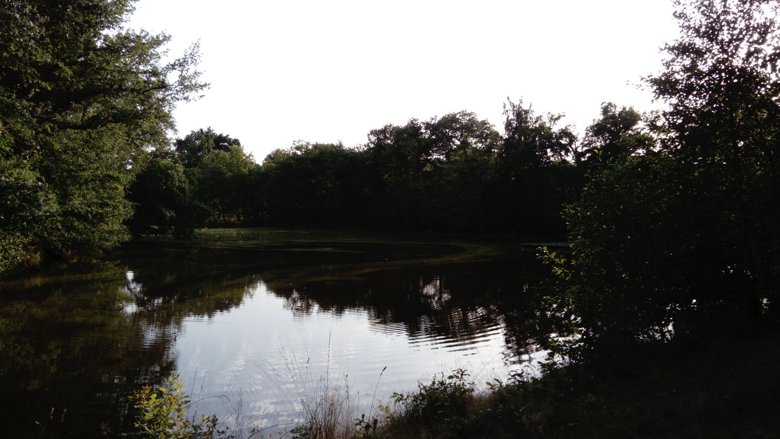 The second lake - great for fishing
