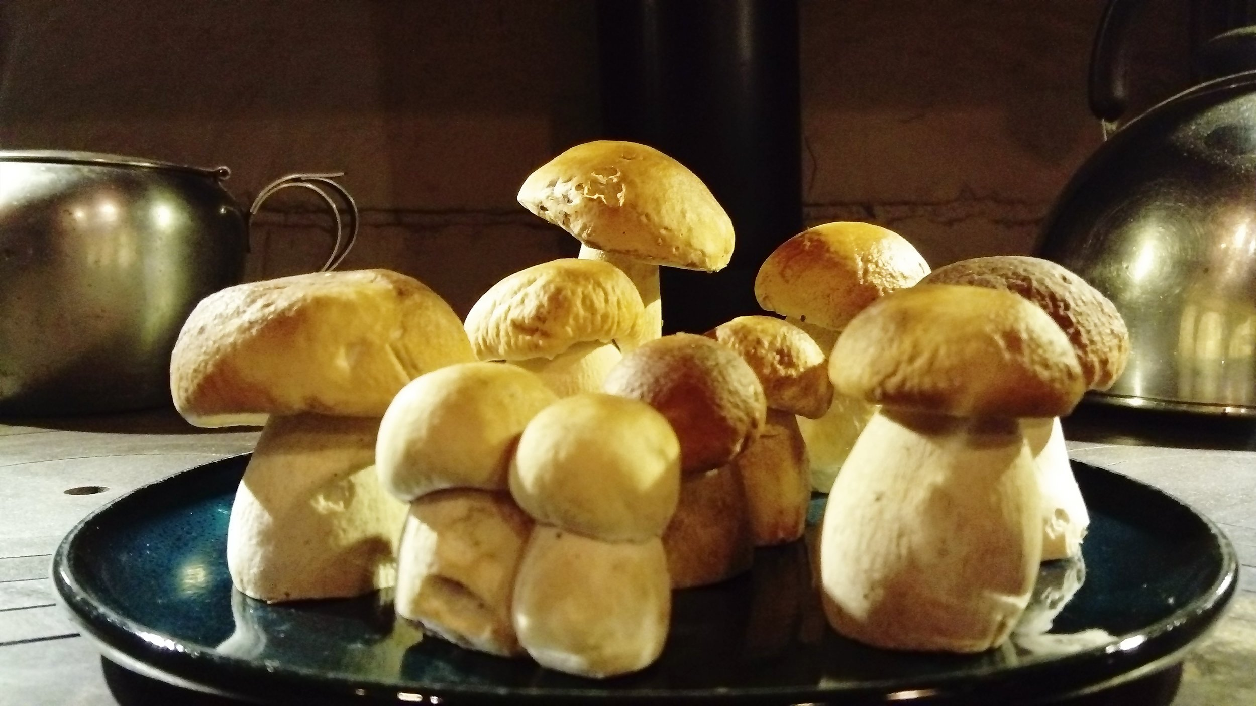 Cepes - a local delicacy. Come at the right time of year and you'll find them growing in the woods.