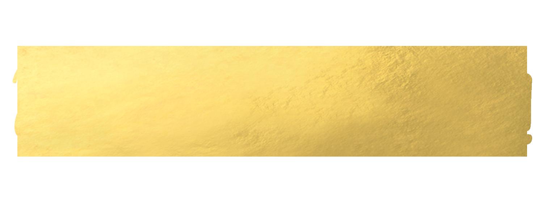 HiI'mElissa.png