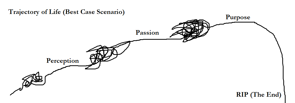 purpose, passion perception.png