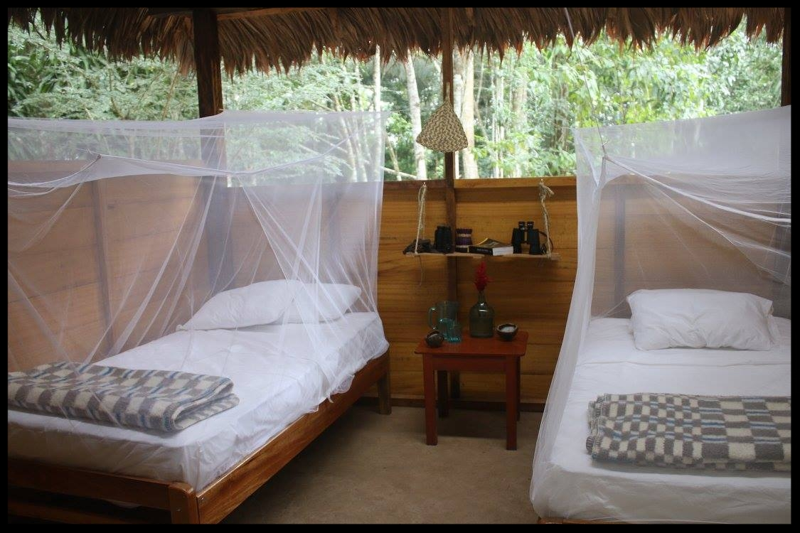 "Comfortable beds with new mattresses, linens, and mosquito nets. ""Jungle Lodge Stylish"""