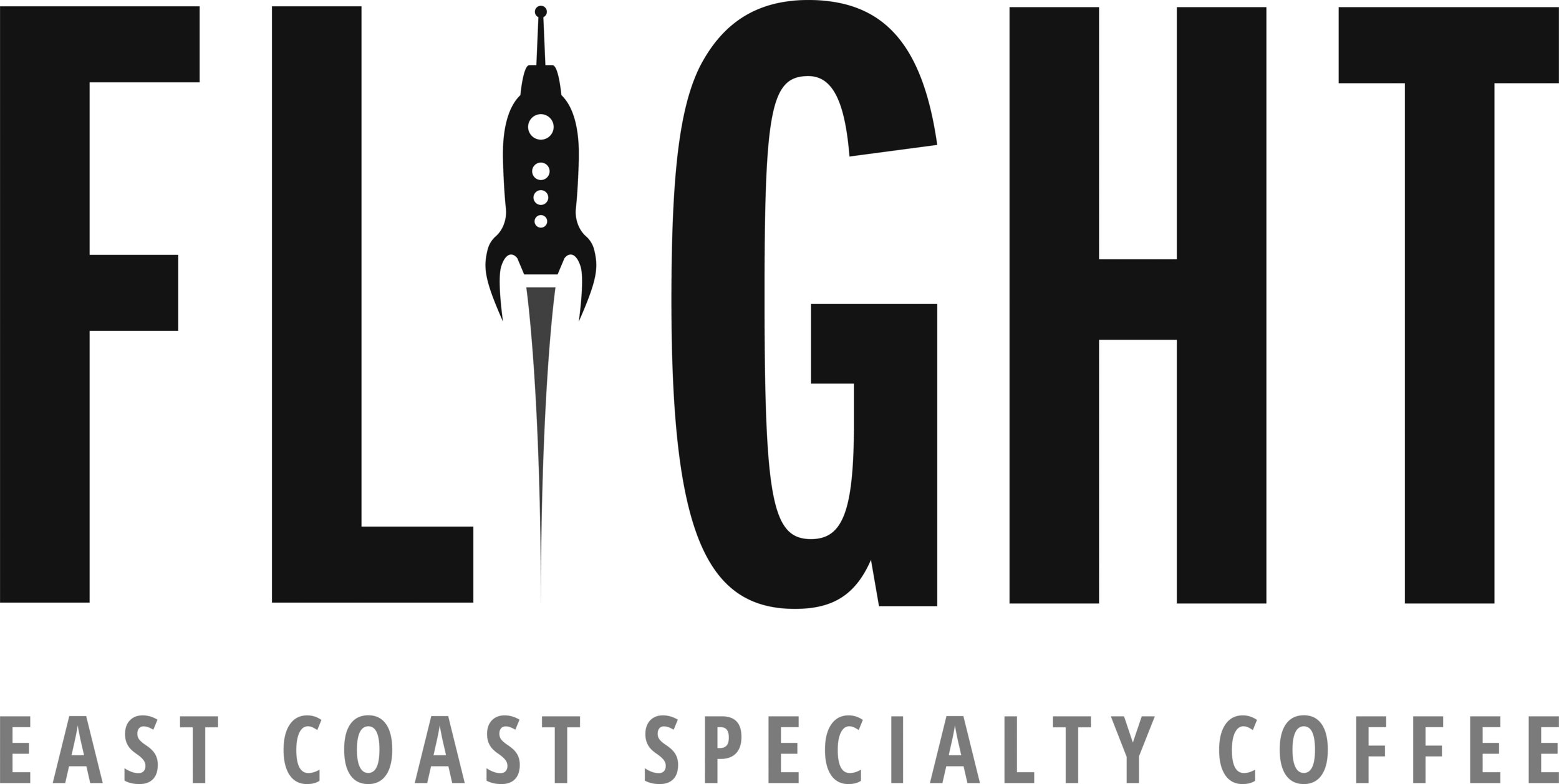 Flight Logo _ 2018_grey.jpg
