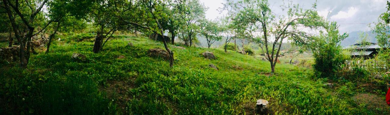 PURE LAND BHUTAN WELLNESS & RETREAT CENTRE, PARO