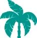 Palm-Design-Element- AQUA.jpg