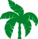 Palm-Design-Element- GREEN.jpg