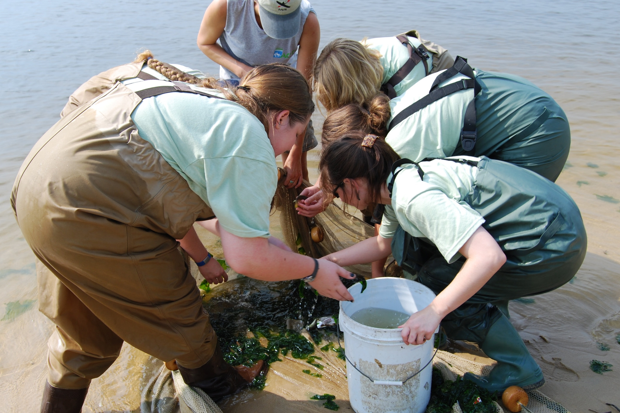 Bay Backpack - Tools for developing Meaningful Watershed Educational Experiences