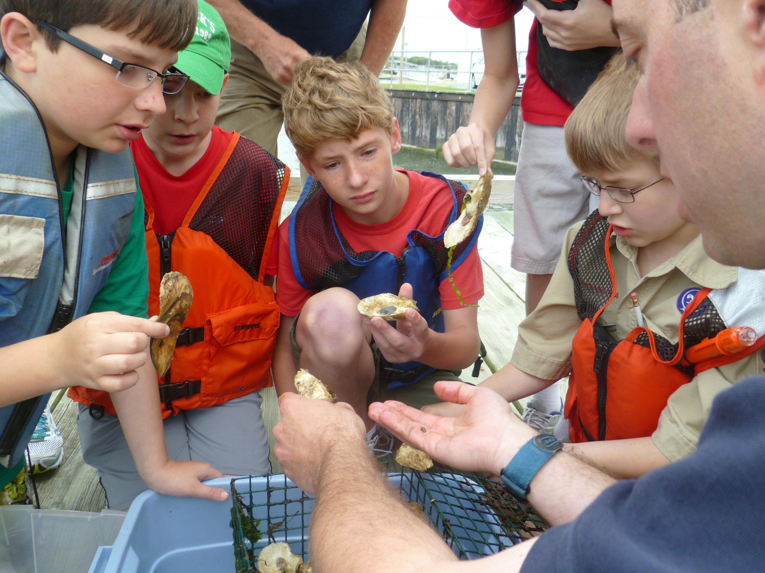Oceanography boy scout merit badge program