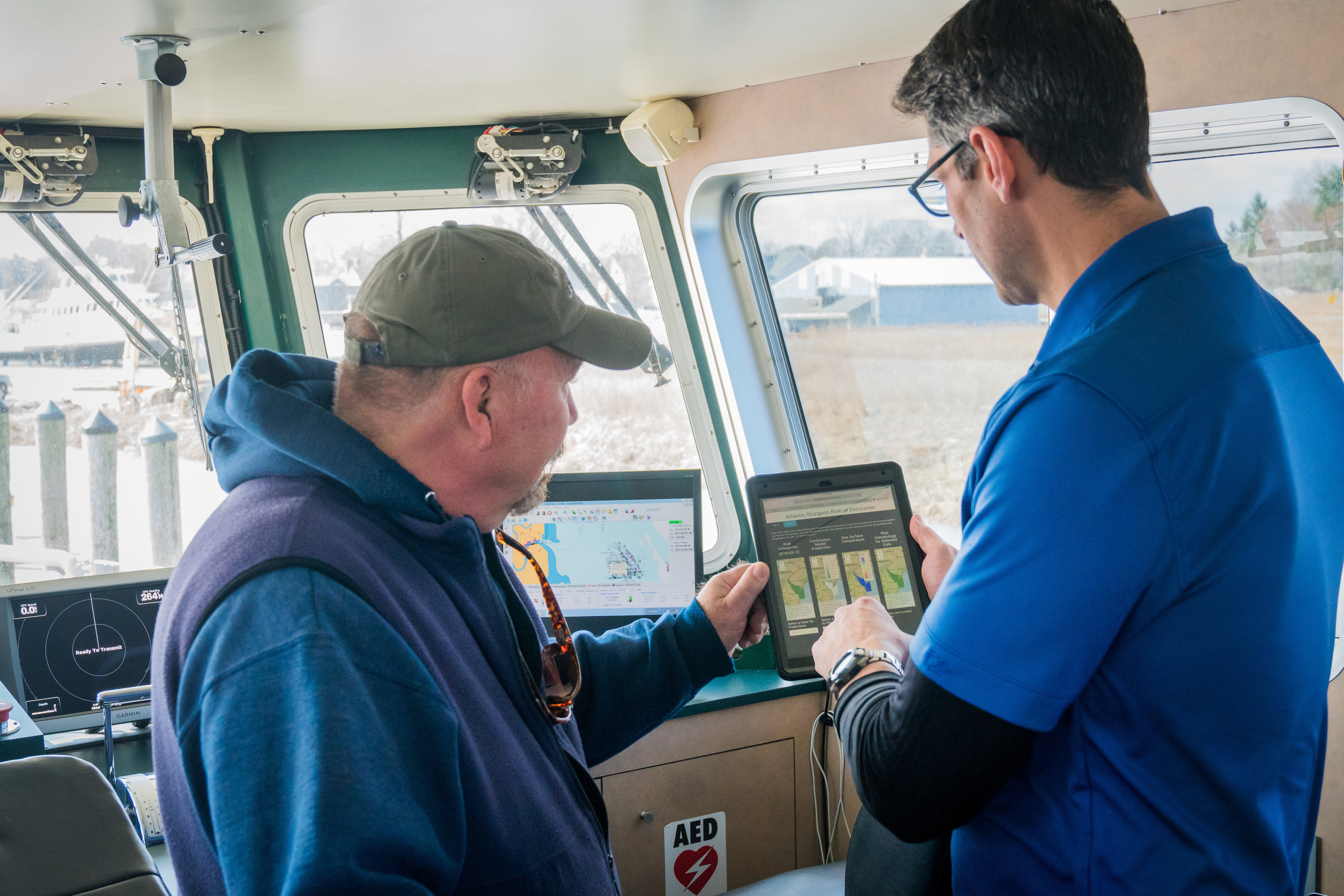 Conserving atlantic sturgeon -