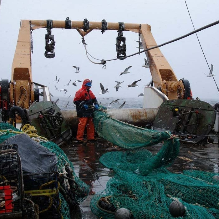 Fisheries - Extension, outreach and research to help achieve sustainable fisheries
