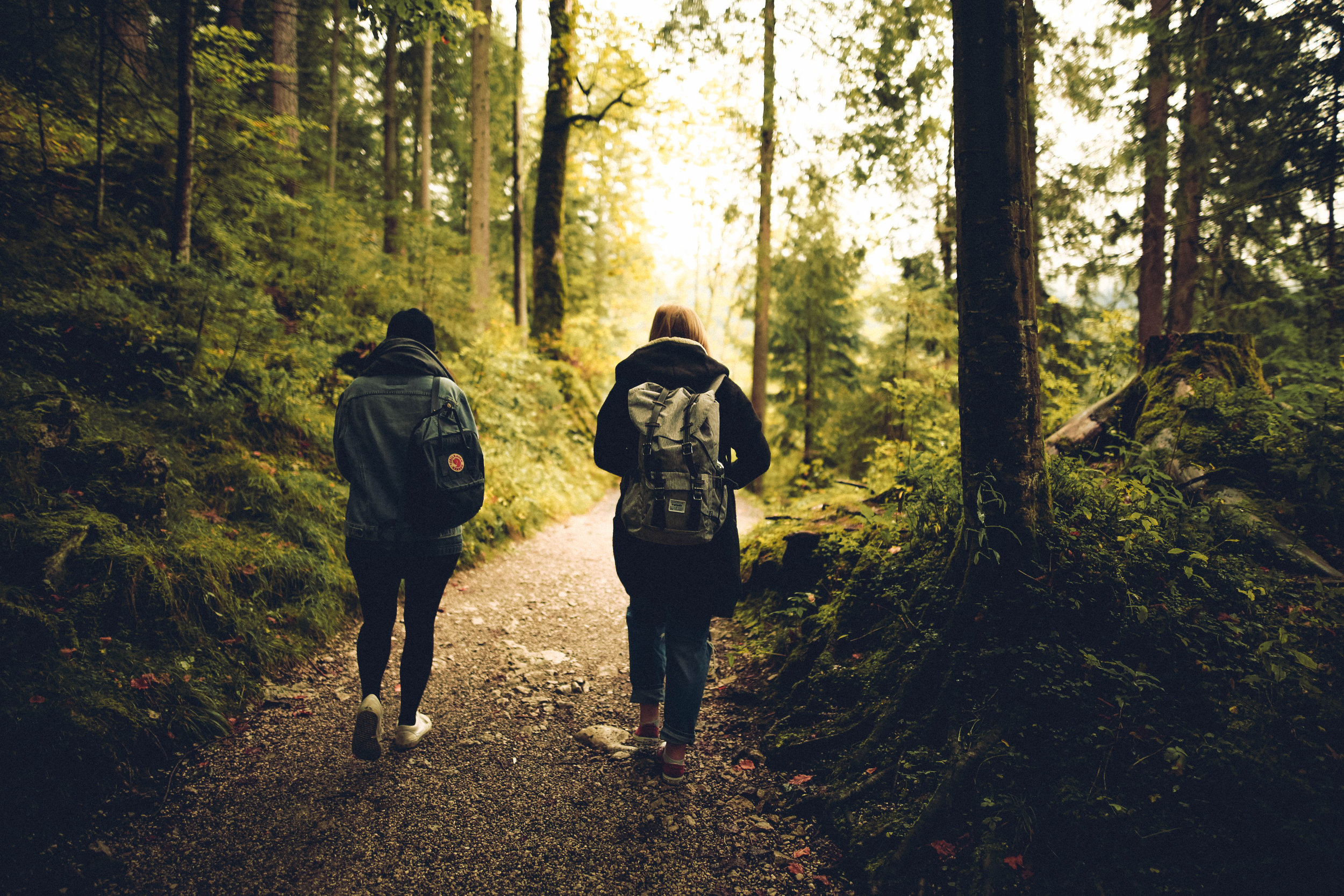 Canva - Two People Walking in the Forest.jpg