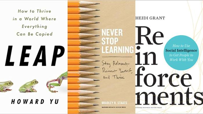 Review of Never Stop Learning -