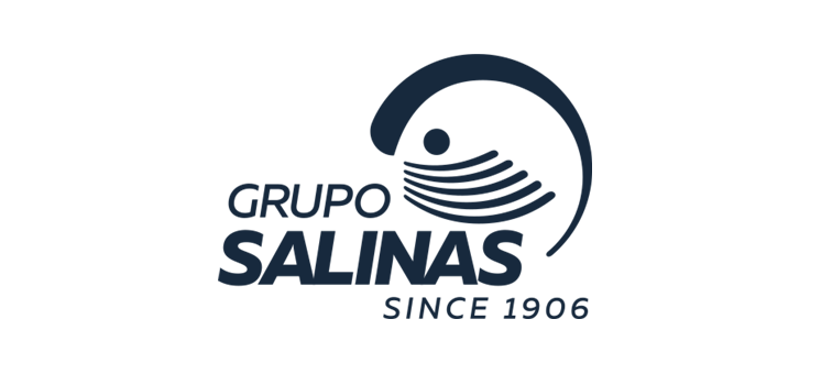 SALINS.png